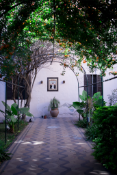 Courtyard goals.