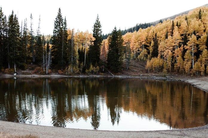 Dog Lake.