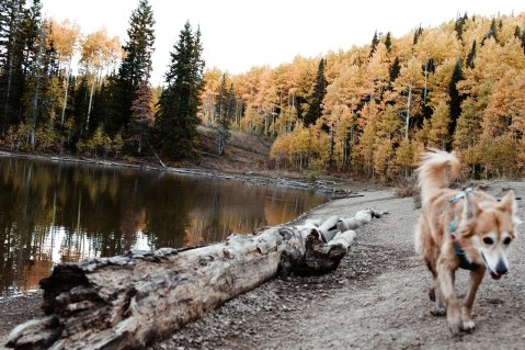 October 7. Dog Lake. Utah.