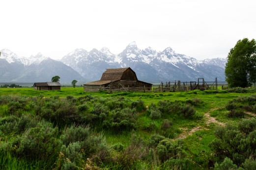 The iconic Mormon Row cabin.